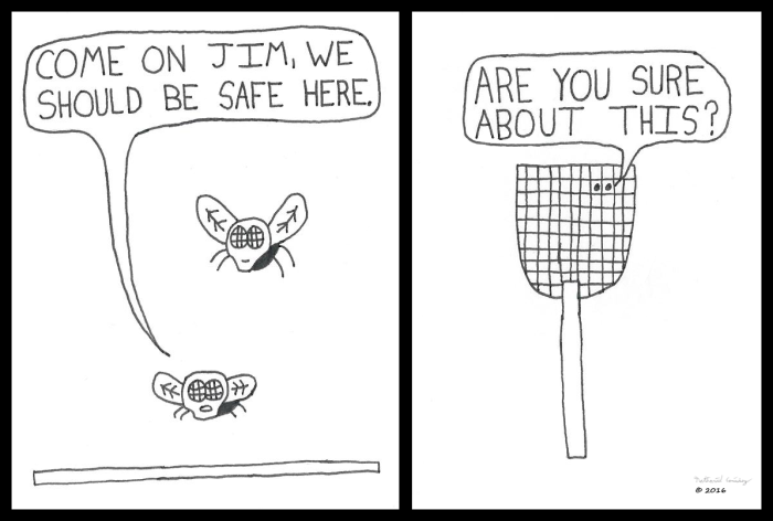 fly-safety