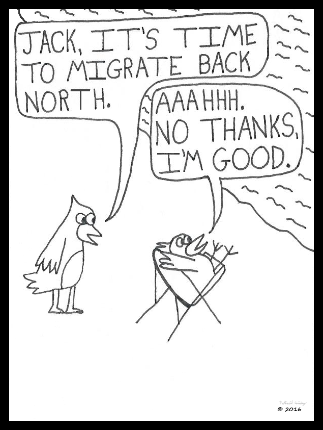 migrate-north