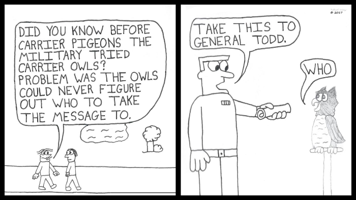 owl-carrier