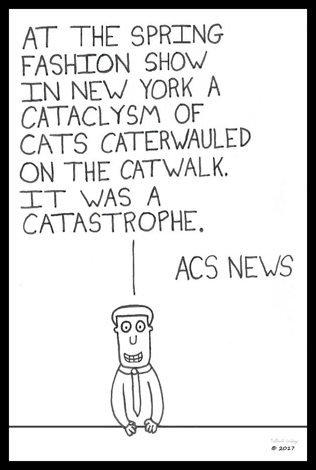 ACS News - Catwalk