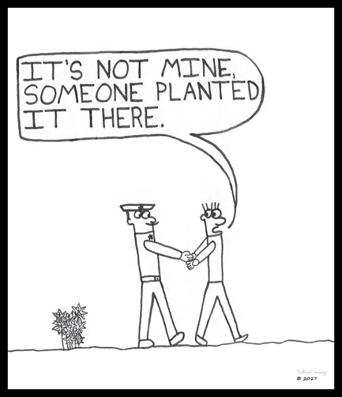 Planted on Me