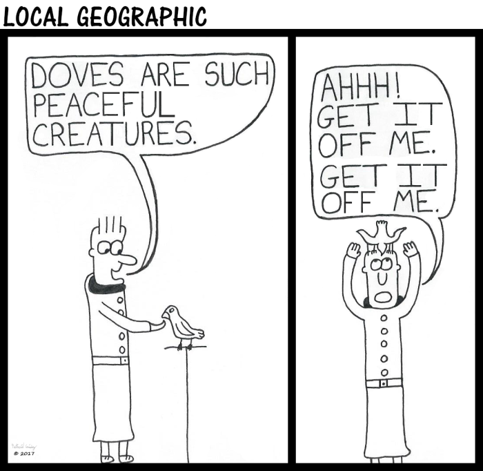 Local Geographic 29
