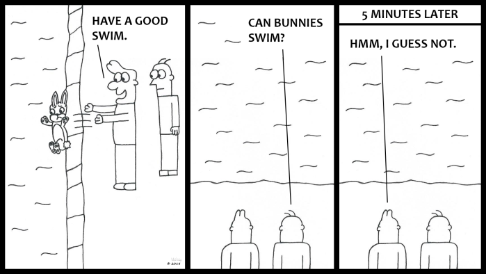Can Bunnies Swim