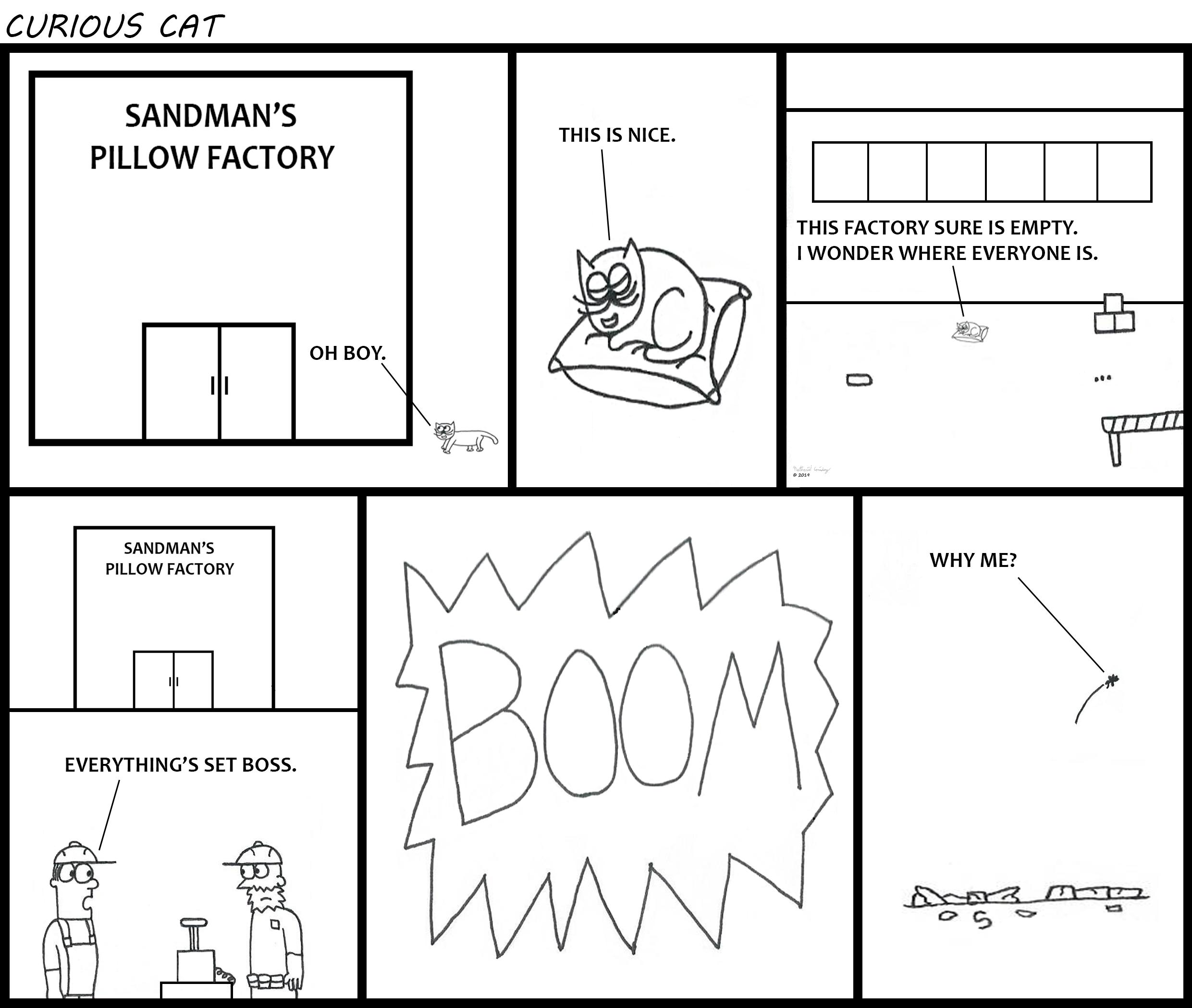Curious Cat - Pillow Factory