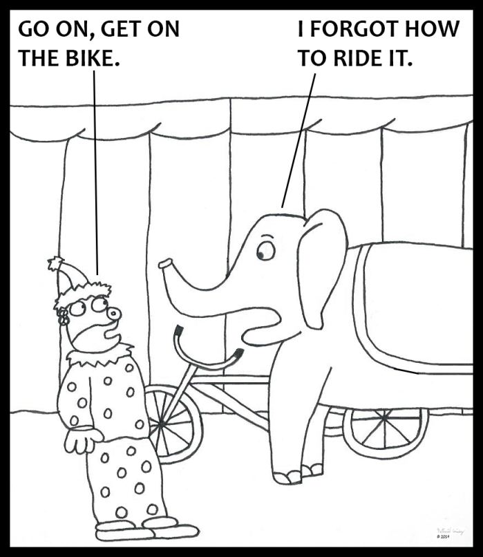 Elephant Forgets Bicycle