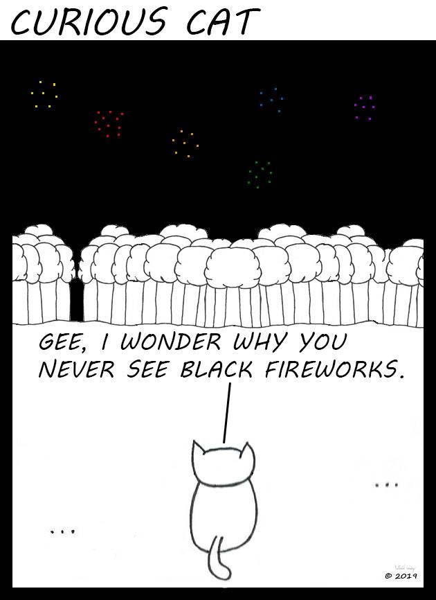 Curious Cat - Black Fireworks