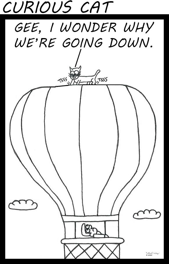 Curious Cat - Hot Air Balloon